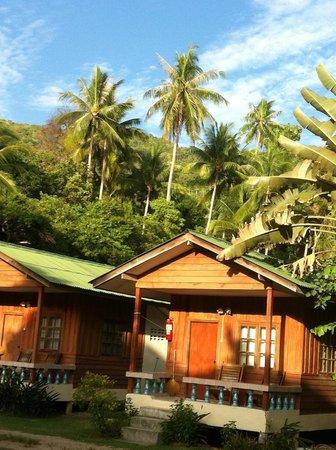 Blue Lotus Resort: Hill view