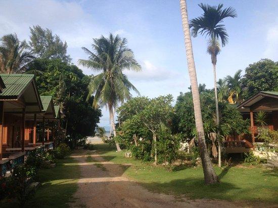 Blue Lotus Resort: Garden