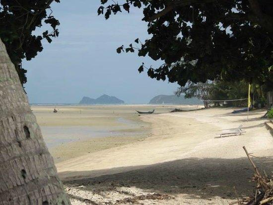 Blue Lotus Resort: Beachfront