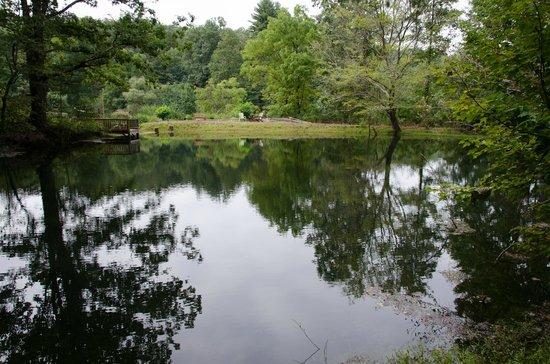 Long Mountain Lodge: Lake on the grounds