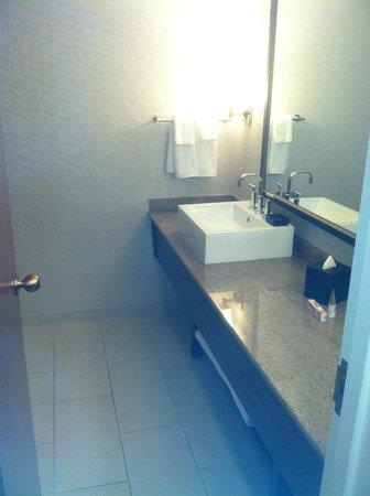 Hyatt Regency St. Louis at The Arch: bathroom vanity