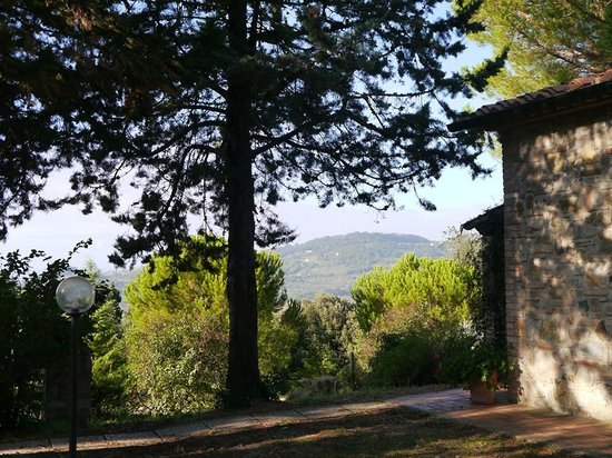Agriturismo San Michele : View from outside front door