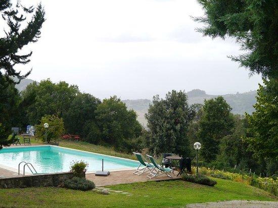 Agriturismo San Michele : The pool