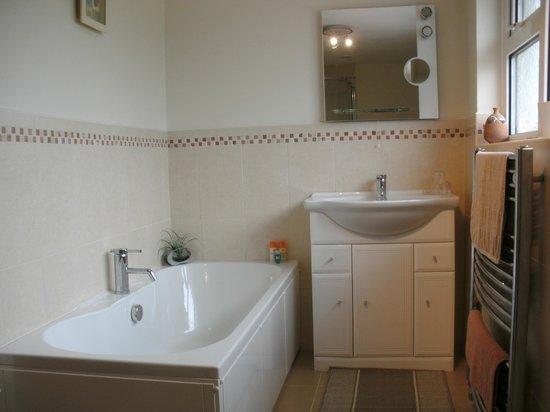 School View B&B: Guest bath/shower room