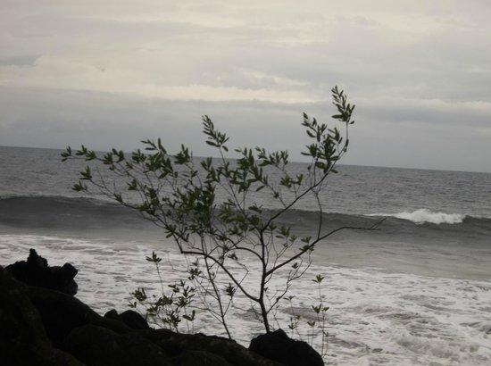 Tsaben Beach Hotel: beach