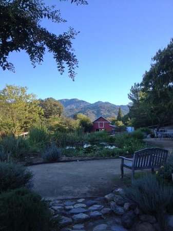 Meadowlark Country House and Resort : Mountain View