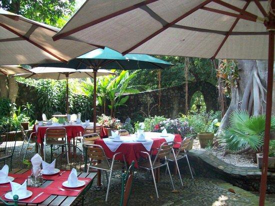 El Rincon del Encanto: Jardín.