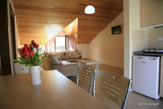 Gokcen Hotel & Apartments : Penthouse room, self catering.