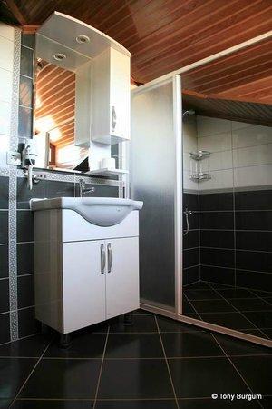Gokcen Hotel & Apartments : Toilet / shower