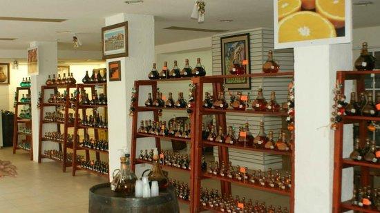 Tequila Tour Cozumel ( HA Hacienda Antigua )