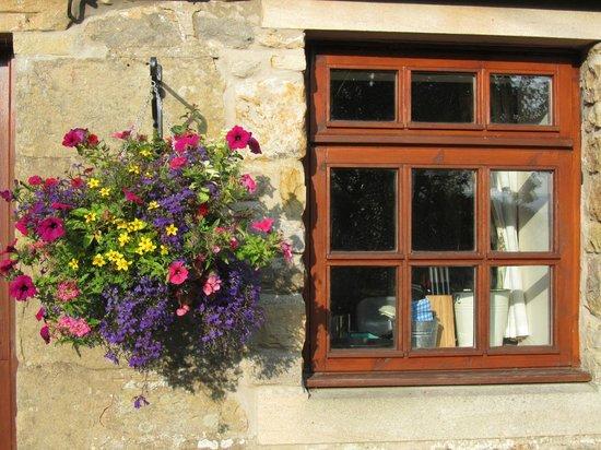 Elishaw Farm Holiday Cottages: Chicken Coop View Cottage - kitchen window