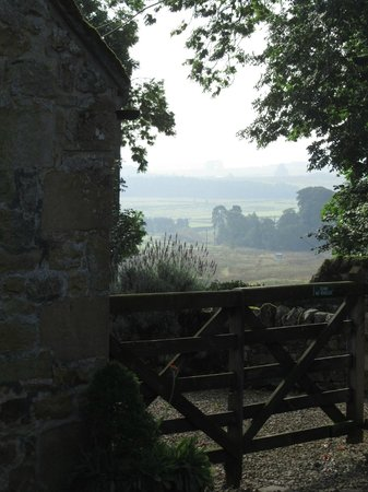 Elishaw Farm Holiday Cottages: View into Elishaw farm courtyard and beyond