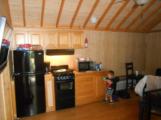 Raccoon Mountain RV Park and Campground: kitchen area in cabin 1