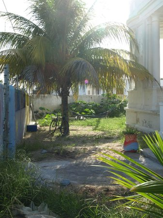 "Hostal Progreso ""El Boarding House"": hamacas"