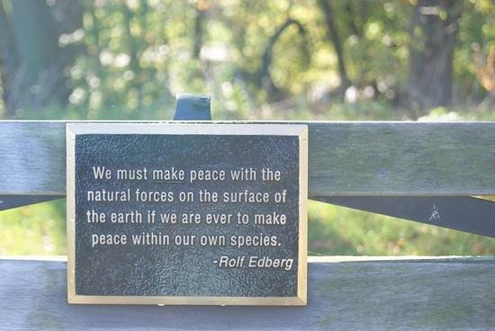Lake Park: loved the plaques on the park benches
