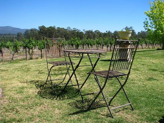Hunter Valley Wine Tasting Tours : Delightful Setting and Blue Skies