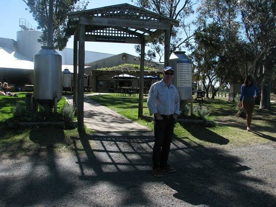 Hunter Valley Wine Tasting Tours : Lunch at Blue Tongue Brewery Cafe