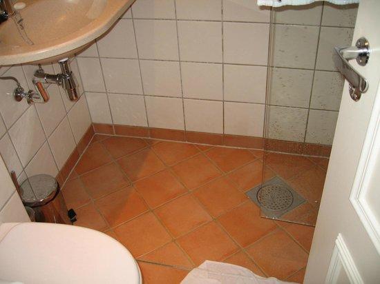 Hotel Park Bergen: Bathroom doesn't work well.