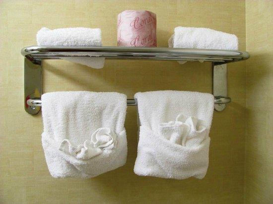 Hotel des Arts: Washroom