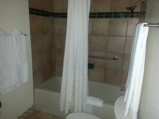 Ojo Caliente Mineral Springs Resort and Spa: Bath/Shower
