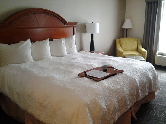 Hampton Inn Lehighton (Jim Thorpe Area) : Room 315