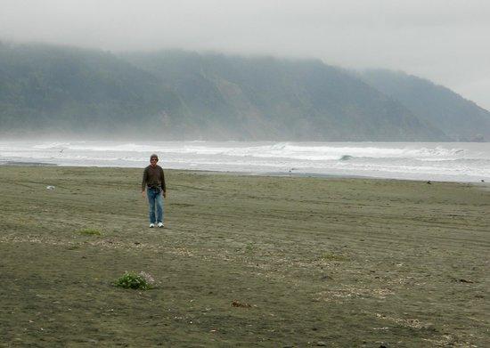 Crescent Beach Motel: Hubby walking along beach.