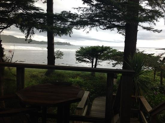 Chesterman Beach Bed and Breakfast: Blick aus dem Fenster