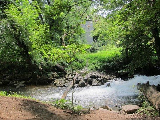 River Riders: Brook