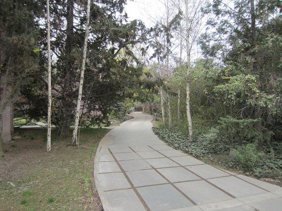Casa Glebinias: The approach