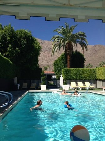 Avalon Hotel and Bungalows Palm Springs: Family Pool