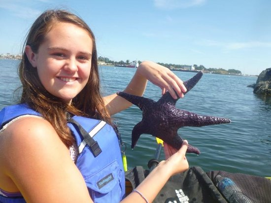 Victoria Waterfront Tours: Jenna with Starfish
