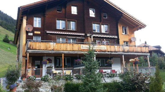 Esther's Guesthouse : Front - Esthers Guesthouse