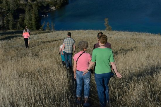 Jasper Tour Company: Heading Down From Viewing The Bighorn Sheep