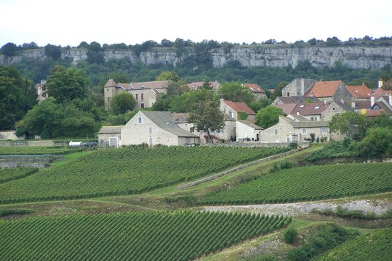 Burgundy on a Plate : the vineyards