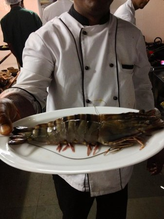 White Pearl Suites : Did you see such a big tiger prawns??? If not, go to Goa ;-))