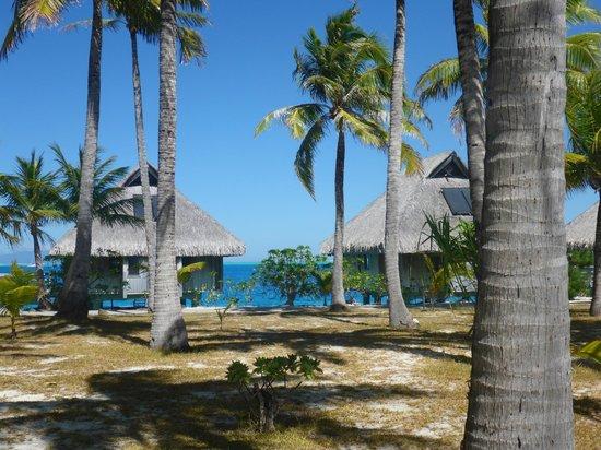 Conrad Bora Bora Nui: The Hilton Resort