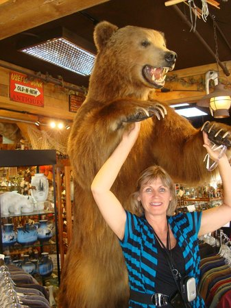 Anchorage City Trolley Tours : souvenir store