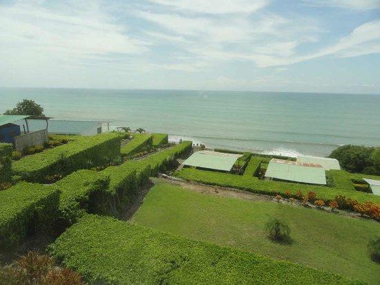 Hotel Punta Blanca: Jardines