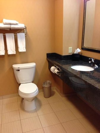 Holiday Inn Express & Suites Helena: room 208 bath queen suite