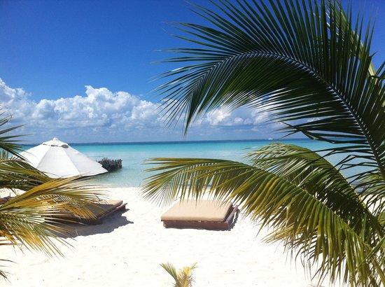 Na Balam Beach Hotel: na balam restaurant view
