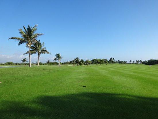 Iberostar Golf Club Cancun: Fairways