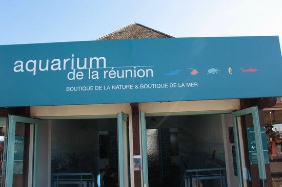aquarium de saint gilles. Black Bedroom Furniture Sets. Home Design Ideas
