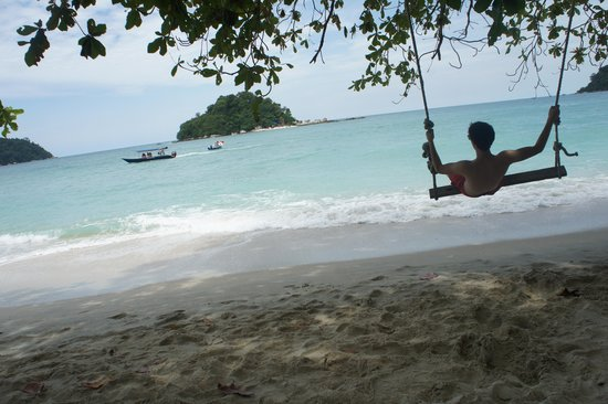 Coral Beach : The swing