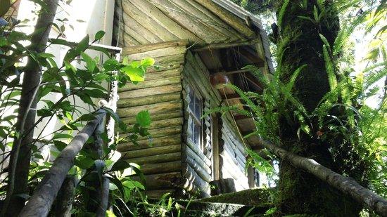 Eco - Hospedaje Ranchitos del Quetzal: Room