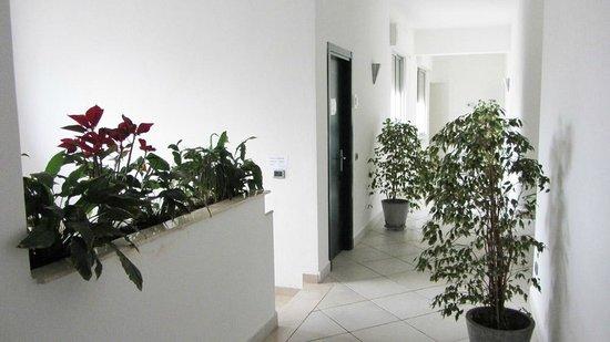 Excelsior Apartments: Ingresso