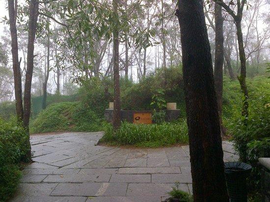 คลับมหินทรา โกดาคูแวลเลย์: View from Room