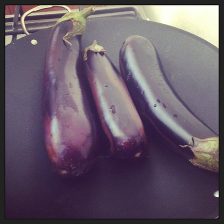 Afiyet Olsun Istanbul-  Cooking Workshop: Cooking eggplant for Turkish Eggplant Yoghurt Dip
