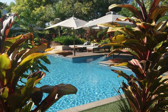 The Billi Resort: Pool