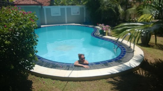 Serendib Guest House: The pool