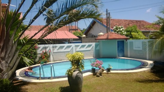 Serendib Guest House : The pool and garden